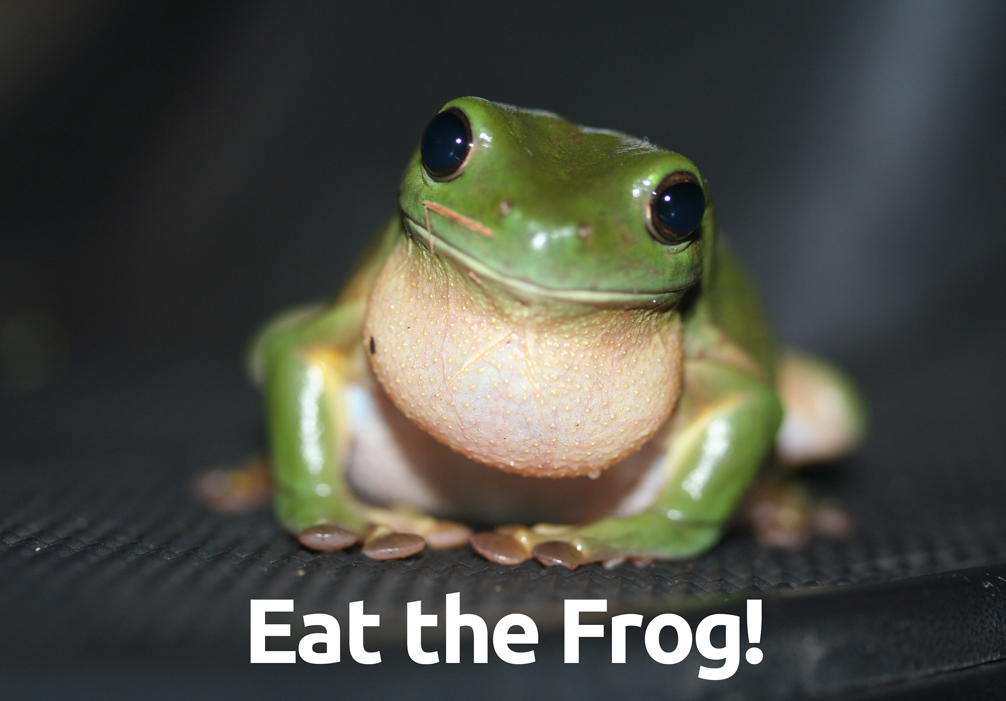 Eat the Frog - Managing your Time